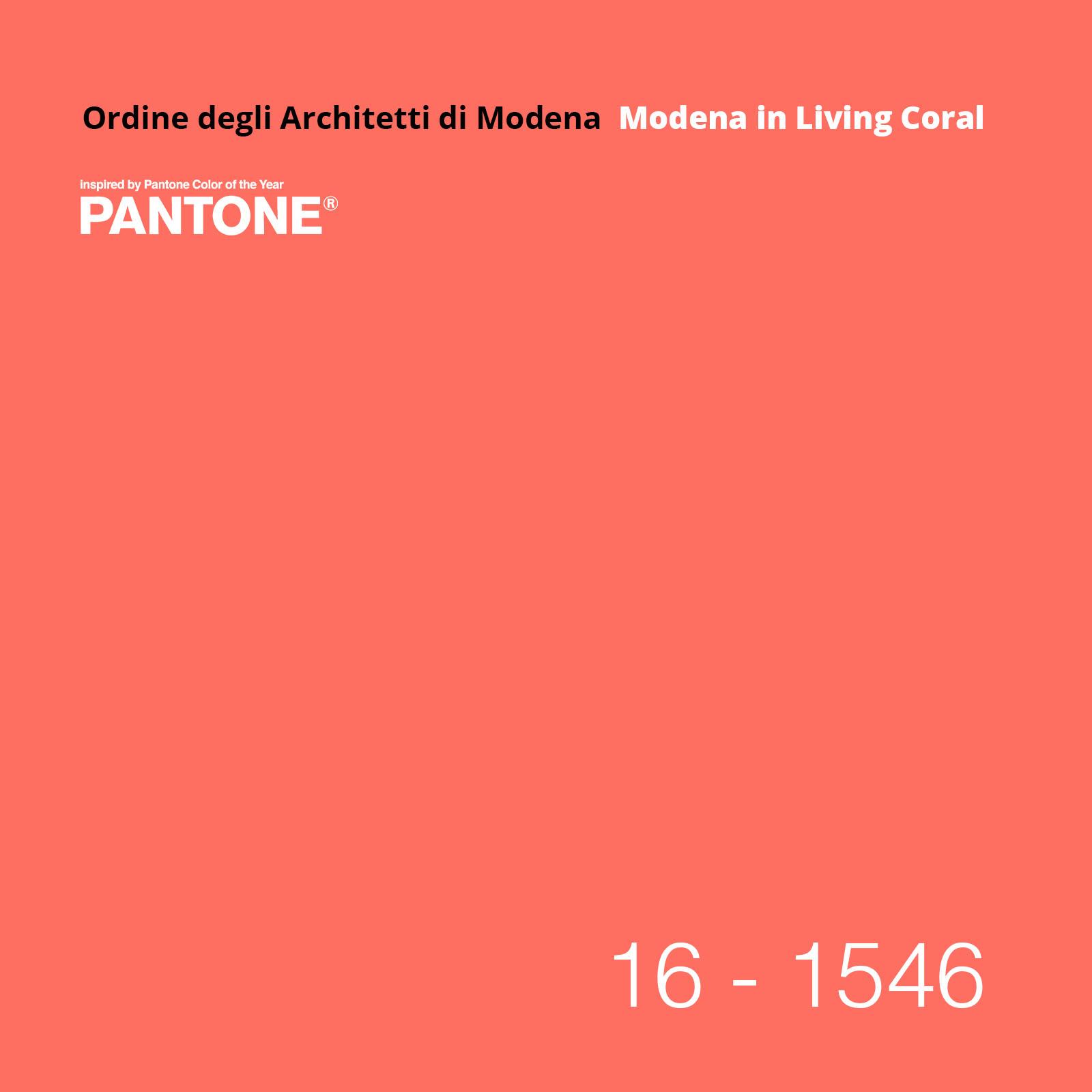 Installazione collettiva - Modena in Living Coral
